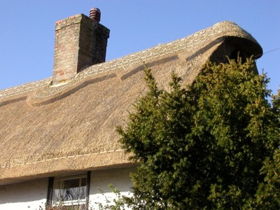 Newthatchedroof2 700X525