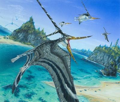 Nyctosaurus Final