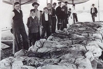 Corpses2