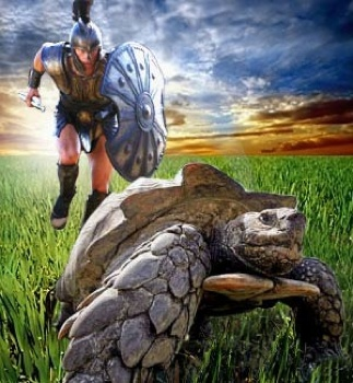 Achilles Tortoise