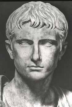 Augustus Prima Head-1