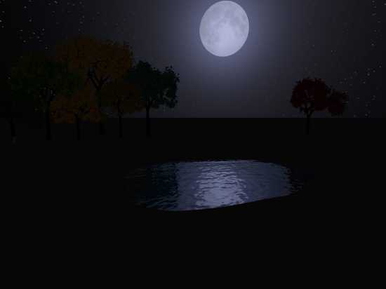 Nighttime-Pond
