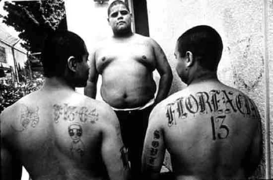 gangs in prisons and jails temporary Governance and prison gangs november 2011 in correctional facilities and on the street most mexi-can mafia members previously participated in a street.