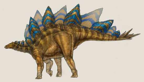 Stegosaurus2