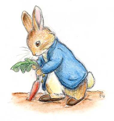 Peter Rabbit By Winnie Beatles