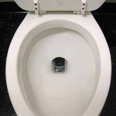 Phoneinthetoilet