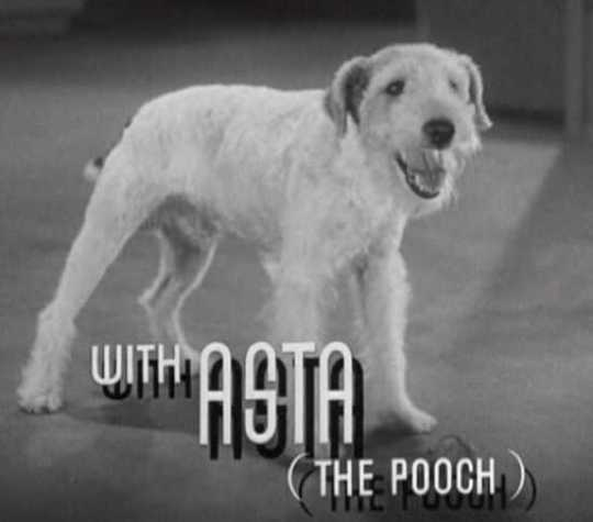 Asta In After The Thin Man Trailer