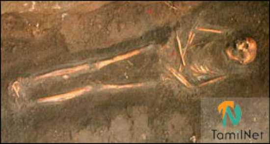 Stadiumgrave Skeleton