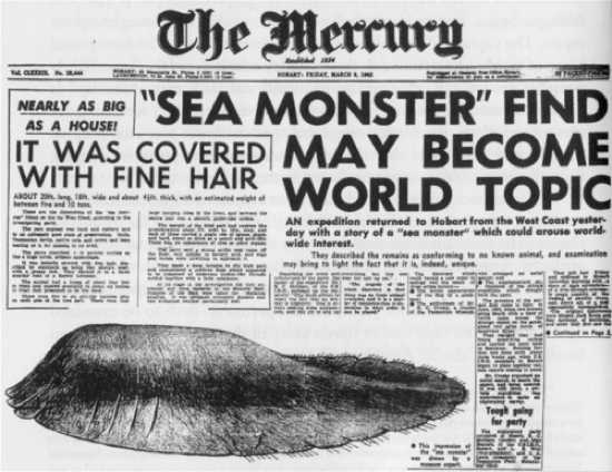 The Mercury Tasmanian Globster1