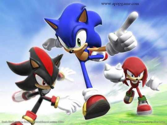 Sonic-The-Hedgehog-And-The-Team-Sonic-The-Hedgehog-7067668-1000-750