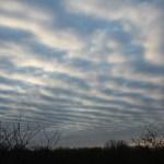 Stratocumulus Clouds 3