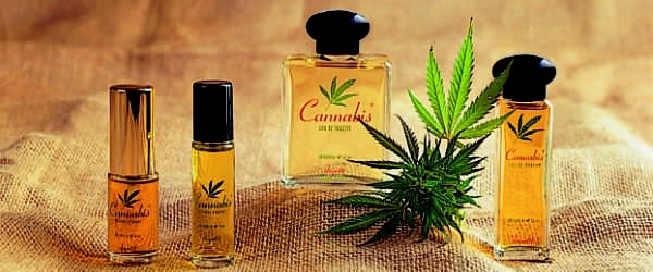 Cannabis Perfume  The First Worldwide Medium Rgb