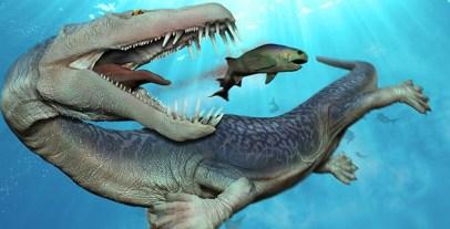 Nothosaurus_new_rough