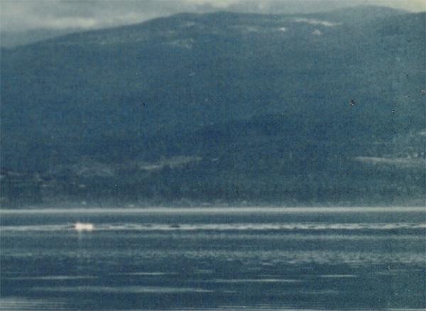 Url-1-39