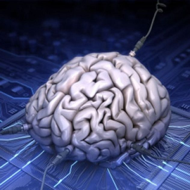 Synthetic-Brain