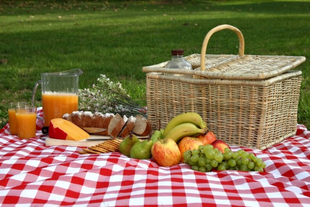 Picnic_Eating