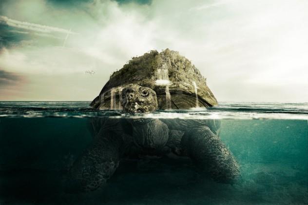 giant_turtle