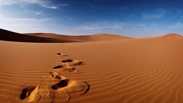 Desert-Tracks