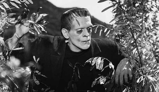 the monsters in the literature faust and frankenstein Mary shelley's frankenstein is obsessed with monsters,  they are both drawn to science by way of a love of literature  recent news & articles.