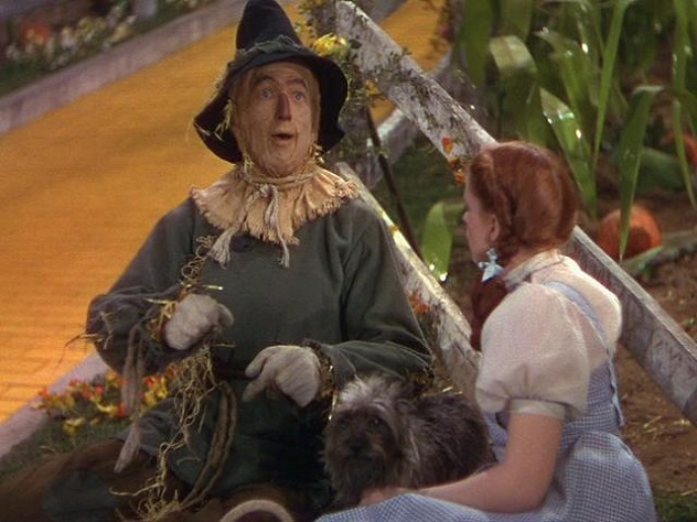 Dorothy-the-Scarecrow-and-of-course-Toto-toto-the-wizard-of-oz-11523902-640-480
