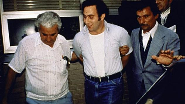 berkowitz_arrest102
