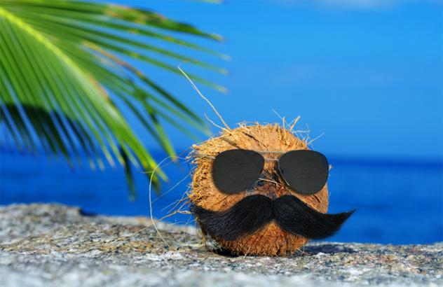 10- coconut