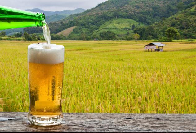 6- farm brewery