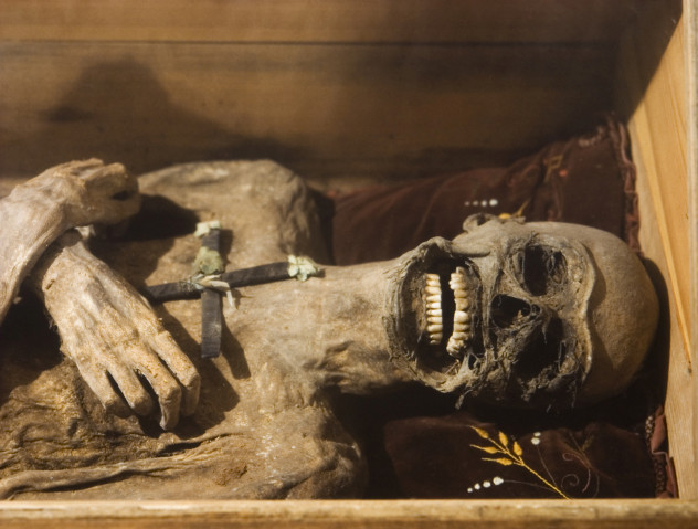 7 mummy