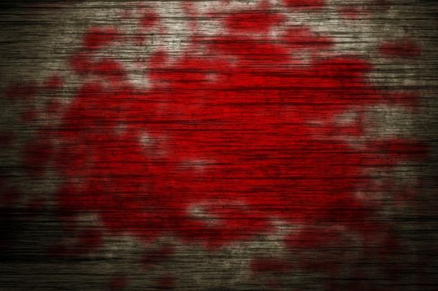 Bloody Wood