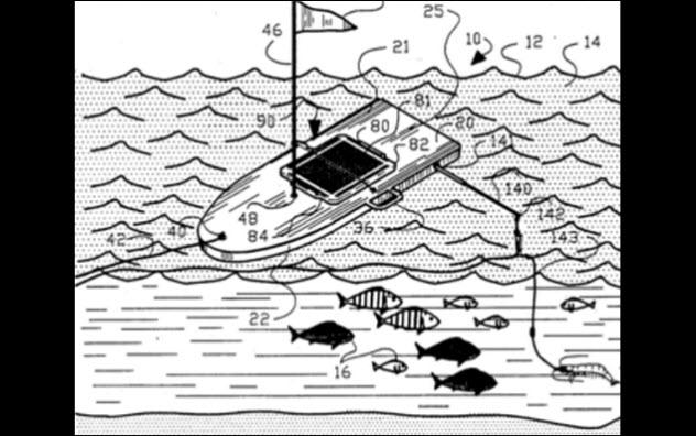 9a-fish-attractor