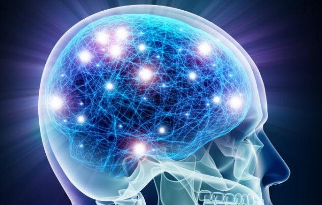 6-brain-neurons_000032713480_Small