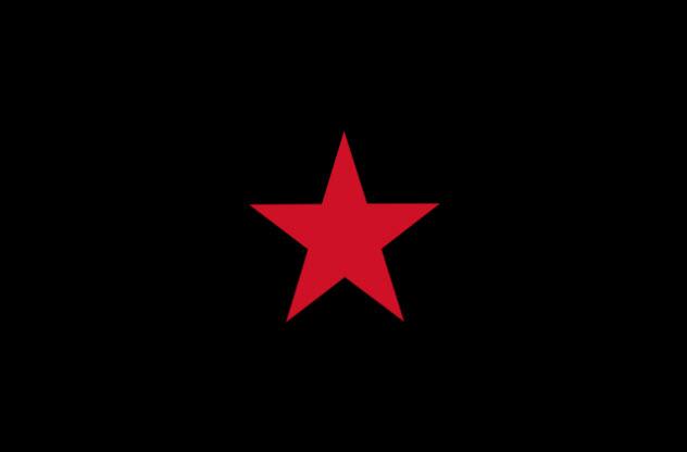 10-zapatista-demo-flag