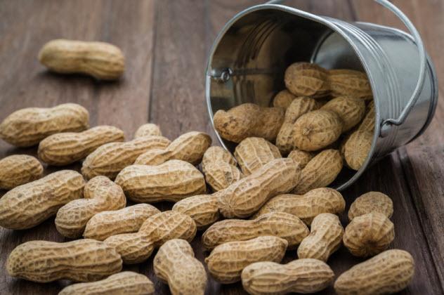 4-peanuts_000078800189_Small
