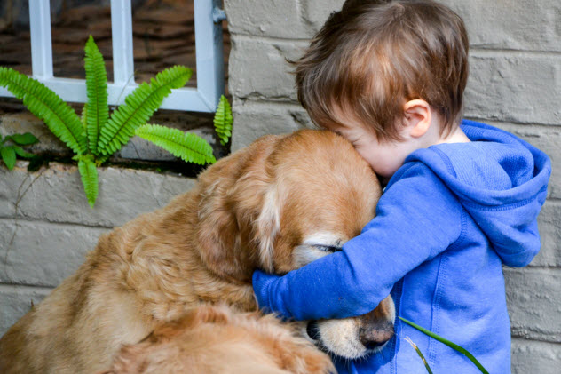 2-boy-hugging-dog_71634549_SMALL