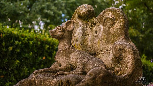1-dog-cemetery