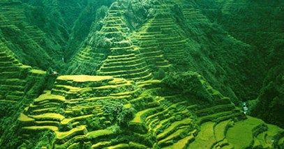 feature-5-banaue-rice-terraces