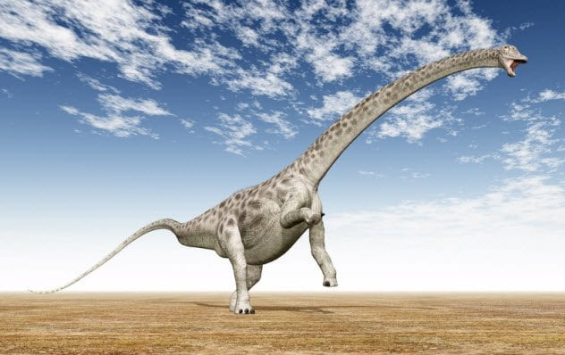 3a-diplodocus_66061817_small