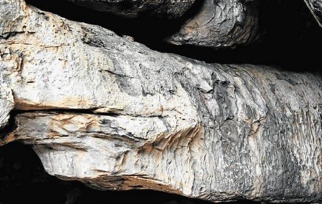 rhino-cave-python