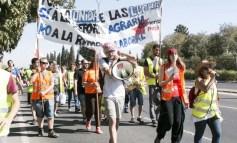 A luta dos trabalhadores rurais em Sevilha: Em defesa dos camponeses da Andaluzia!