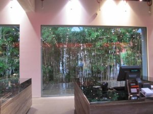 the boss store in mitte has its own bamboo forest