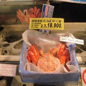 JAPANESE FOOD KALEIDOSCOPE - 1