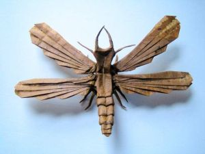 insect_origami
