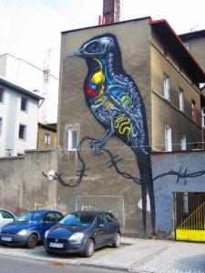 katowice street art roa 2