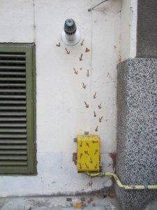 veliko tarnovo street art 32