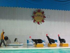 otaru aquarium2