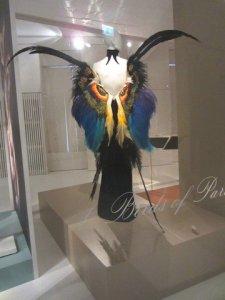 birds of paradise in momu antwerp 1
