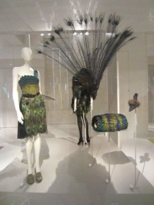 birds of paradise in momu antwerp 7