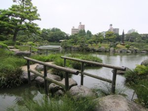 kiyosumi gardens in tokyo 11