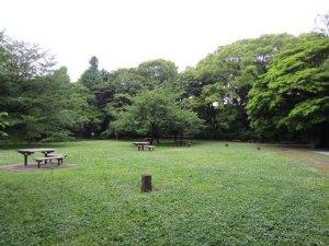 kiyosumi gardens in tokyo 6