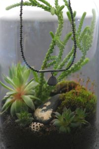 make your own terrariums 4